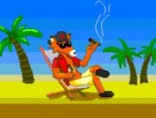 Vamos a la playa Señor Zorro